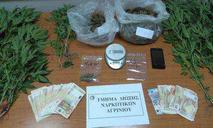 Συνελήφθη 39χρονος στις Φυτείες Ξηρομέρου για καλλιέργεια και διακίνηση ναρκωτικών (φωτο)
