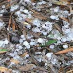 Ολοκληρωτική καταστροφή της ελαιοπαραγωγής από χαλαζόπτωση σε Χρυσοβέργι και «Μαγούλες»