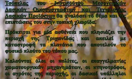 """Ενημέρωση για το «μεταχρωματικό έλκος του πλατάνου"""" στον Δήμο Θέρμου."""
