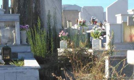Αγρίνιο | Καταγγελίες για την τραγική κατάσταση στα κοιμητήρια