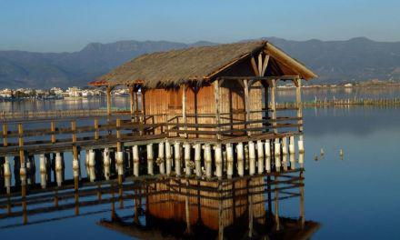 Τα παραγωγικά και μη δημόσια ιχθυοτροφεία της λιμνοθάλασσας Μεσολογγίου-Αιτωλικού