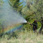 Υψηλός κίνδυνος πυρκαγιάς και σήμερα -Ποιες περιοχές κινδυνεύουν [χάρτης]- -Σε ισχύ η απαγόρευση κυκλοφορίας σε δάση