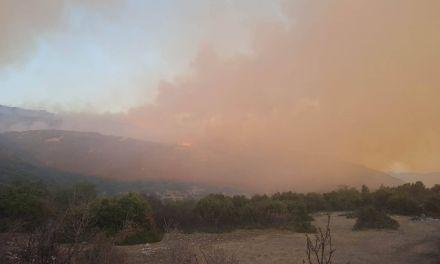 Τώρα-Νέα φωτιά στην Παλαιομάνινα