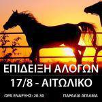 Επίδειξη των αλόγων στο Αιτωλικό στις 17 Αυγούστου