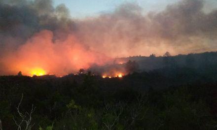 Συνεχίζει το καταστροφικό της έργο η φωτιά στα Αμπέλια για 4η ημέρα