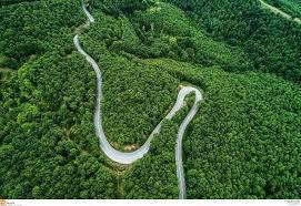 Προσλήψεις δασολόγων και δασοπόνων για τους δασικούς χάρτες