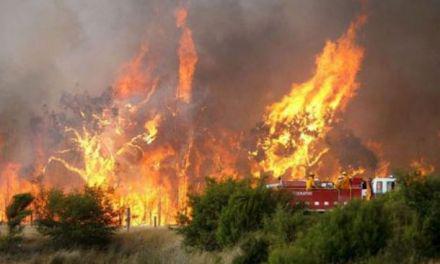 Φωτιά στο Κοκκινόλογγο του Δήμου Αγρινίου- Απείλησε και τον οικισμό!
