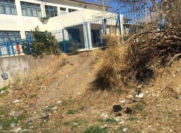 Αγρίνιο:Τραγική κατάσταση εντός και εκτός του 8ου δημοτικού σχολείου- Xωρίς κάδους και άσφαλτο!