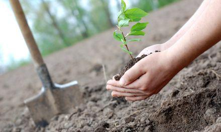 1 δισ. ευρώ από την Commission για βιώσιμη γεωργία, διατροφική και αγροτική ανάπτυξη