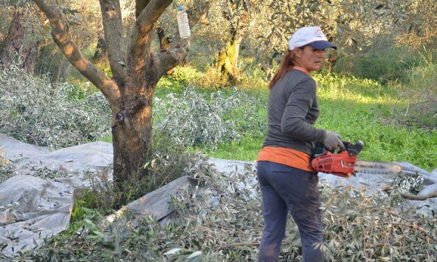 Την Παρασκευή η καταβολή του χρηματικού βοηθήματος στις πολύτεκνες αγρότισσες