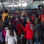 Βιωματική εκπαίδευση μαθητών γύρω από τη βρώσιμη ελιά στη Σπολάιτα