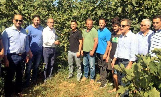 Επιπλέον 177 νέοι  αγρότες εντάσσονται  στο Υπομέτρο 6.1 «Εγκατάσταση Νέων Γεωργών» του ΠΑΑ 2014-2020