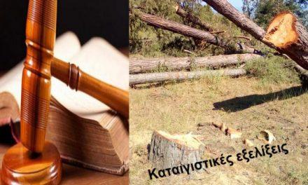 Μήνυση από το Δασαρχείο Μεσολογγίου για τα δέντρα στη Ματαράγκα!