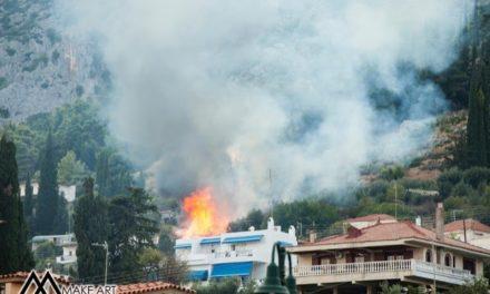 Φωτιά κοντά στο δασύλλιο Αστακού