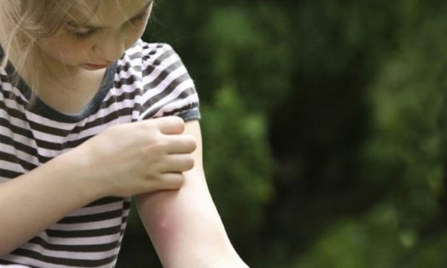Μεσολόγγι: Οι κάτοικοι βιώνουν καθημερινά ένα μαρτύριο με τα κουνούπια!-Τι απαντά ο δήμος