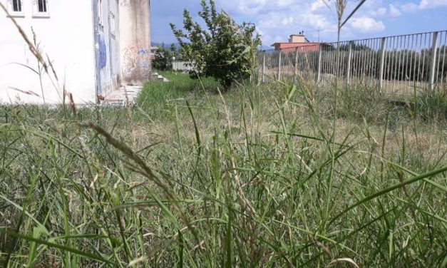 """Έχει δίκιο ο δήμαρχος Αγρινίου να τιμωρεί τους κατόχους ακαθάριστων οικοπέδων αλλά στον """"εαυτό του"""" τι πρόστιμο θα βάλει;"""