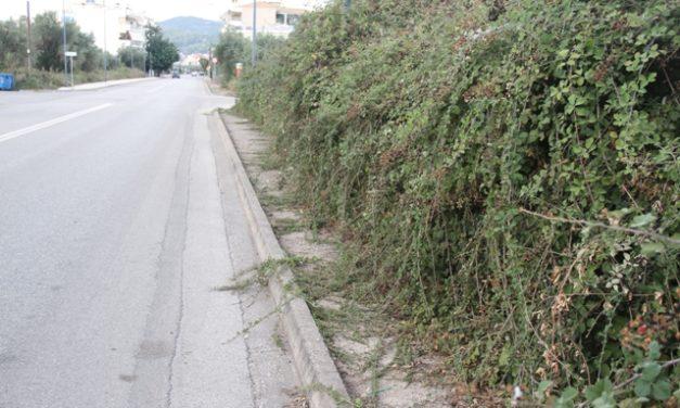 Αγρίνιο-Οδός Πανεπιστημίου ή οδός Βατοπεδίου;